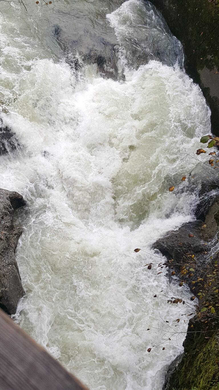 Herbstwanderung Wasserwanderweg Hittisau - Image 5