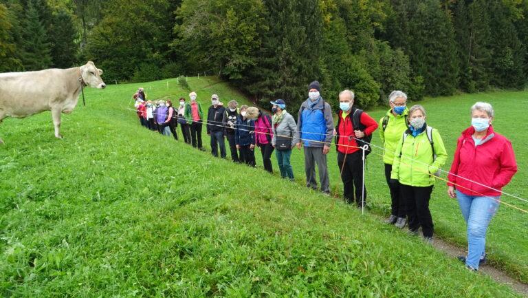 Herbstwanderung Wasserwanderweg Hittisau - Image 14