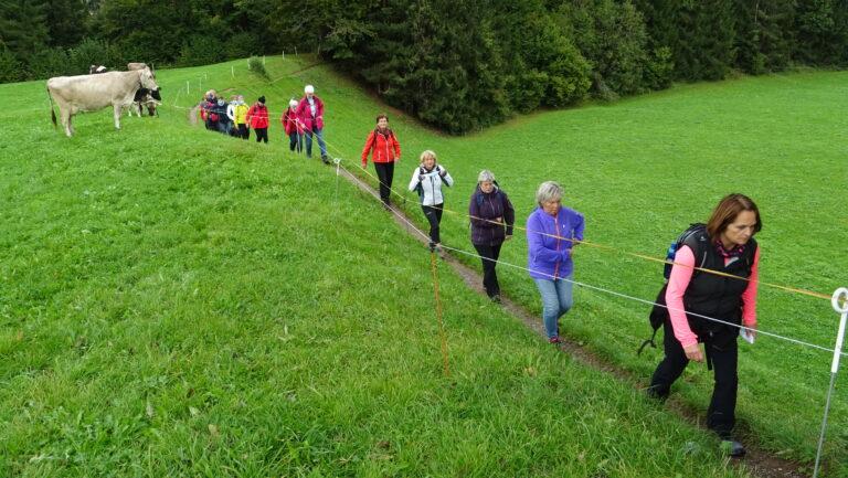 Herbstwanderung Wasserwanderweg Hittisau - Image 16