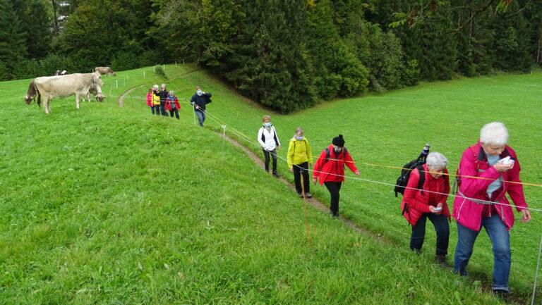 Herbstwanderung Wasserwanderweg Hittisau - Image 17