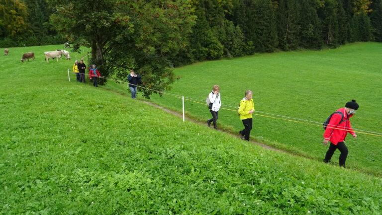 Herbstwanderung Wasserwanderweg Hittisau - Image 18