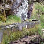 Madeira3-150x150.jpg