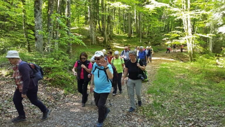 Wanderung Schetteregg - Image 6