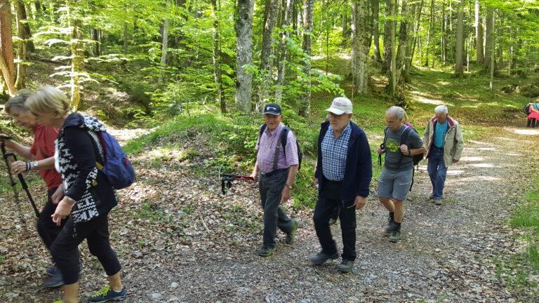 Wanderung Schetteregg - Image 7