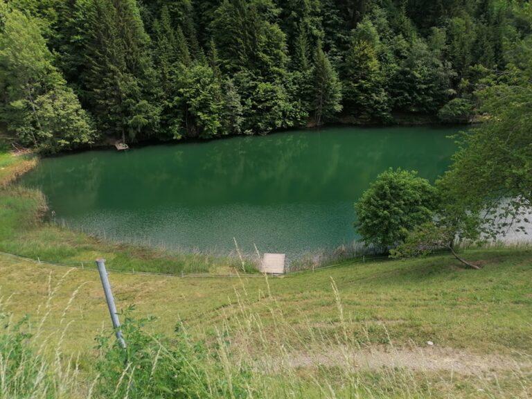 Ausflug Seewaldsee - Image 13