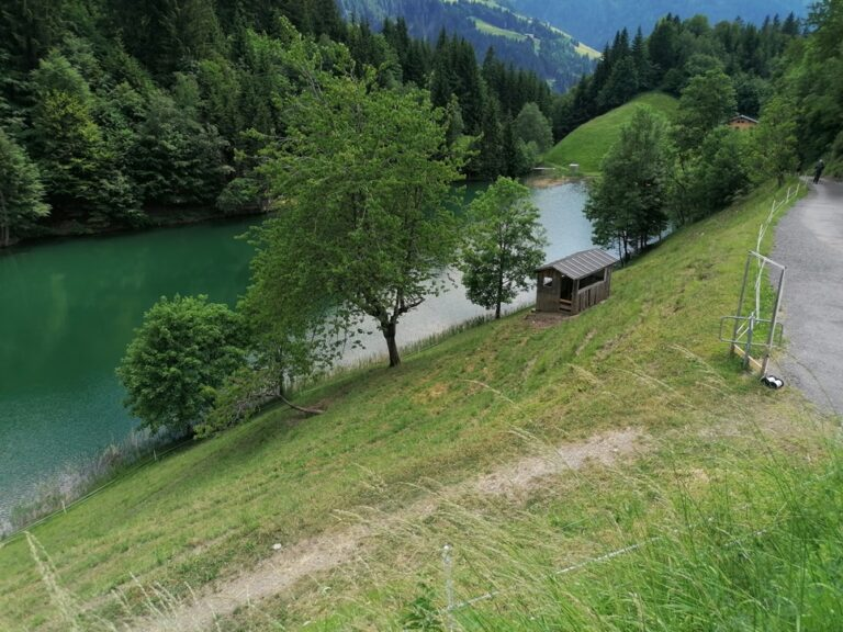 Ausflug Seewaldsee - Image 14