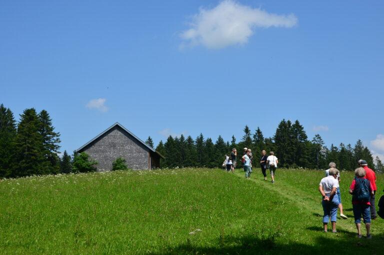 Ausflug nach Sulzberg - Image 20