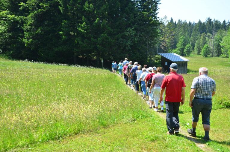 Ausflug nach Sulzberg - Image 16