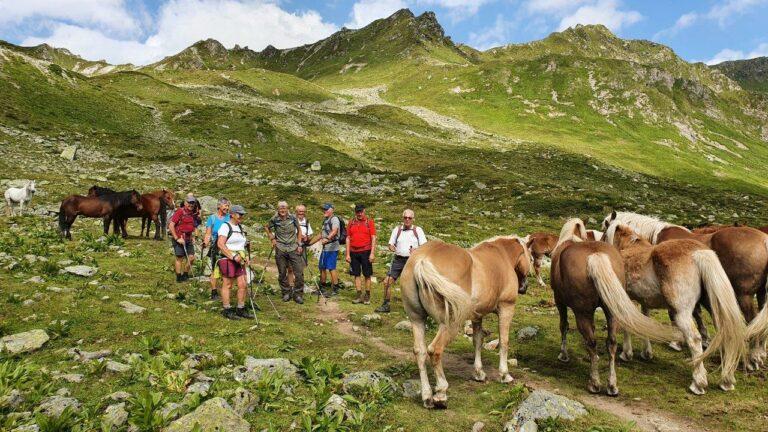 Tolles Bergwetter, schöne Wanderungen und gute Laune - Image 18