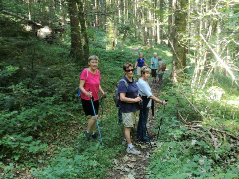 Wanderung August - Image 5
