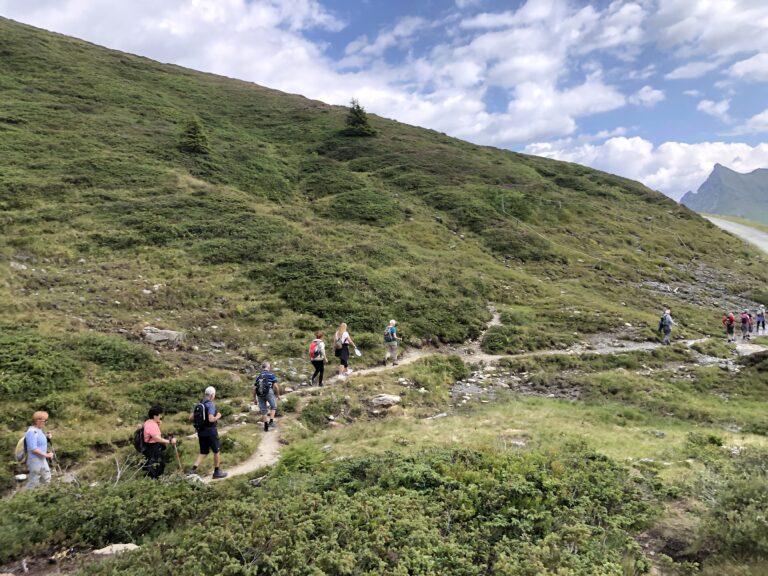 Tolles Bergwetter, schöne Wanderungen und gute Laune - Image 14